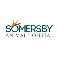 somersby animal hospital